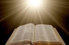 """Приглашаем на курс """"Библия за год"""""""